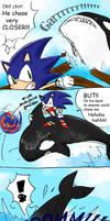 Sonic - Good IDEA?