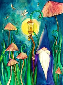 The Magician Gnome