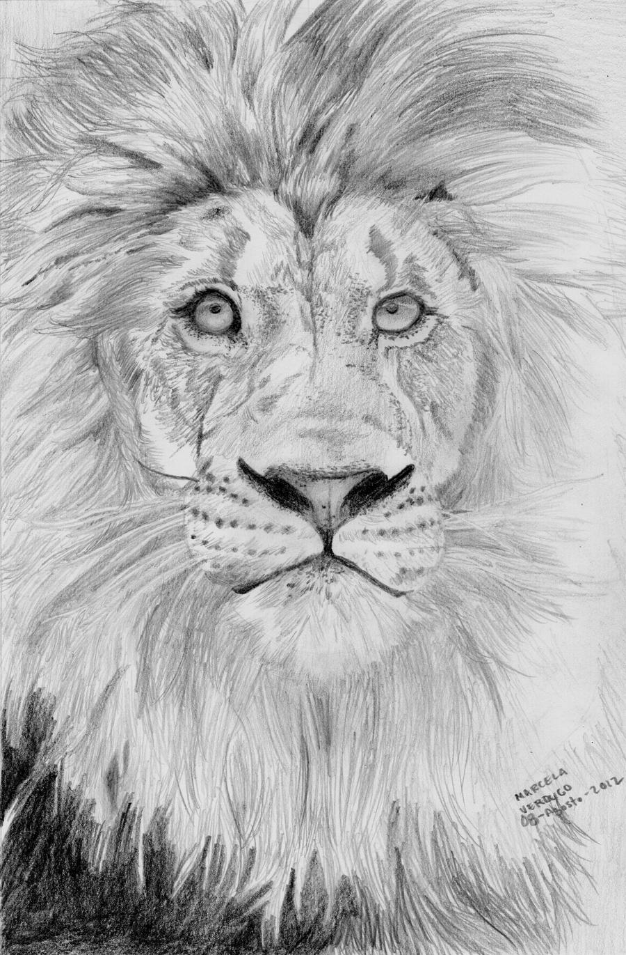 Lions face drawing - photo#16