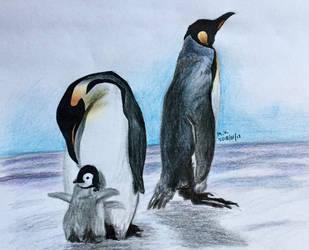 Penguins by BakGuiy
