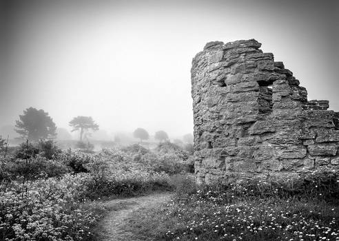 Visby town wall in mist