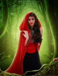 Once upon a time ... Little Red Riding Hood