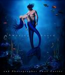 The Love of Mermaids