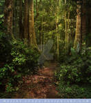 Forest Premade Stock