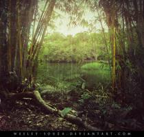 Window to the Lake by Wesley-Souza