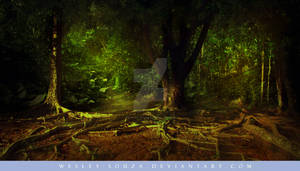 Forest Premade