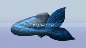 Blue Mermaid Tail PNG Stock