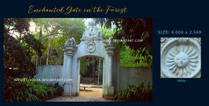 Enchanted Gate in the Forest - Stock