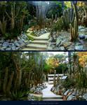 Land of Cactus