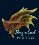 Dragon head - PNG Stock by Wesley-Souza