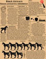 Black Unicorn - Original Species Sheet by horse14t