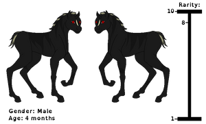 Adoptable Black Unicorn Foal !~{Closed}~! by horse14t