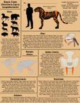 Black Tiger - Original Species Sheet