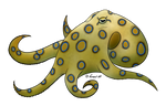 How I Draw: A Blue Ringed Octopus (request)