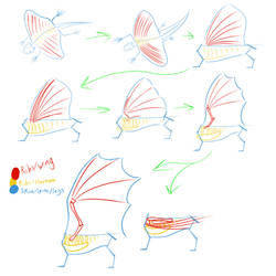 Dragons: Ribs to Wings Evolution Speculation by horse14t
