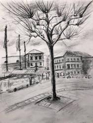 Mainz tree by akarudsan