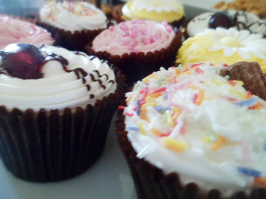 Cupcakes by CaprihinaGirl