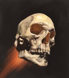 Flying Skull by Sharprock86