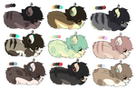 Palette Adopts (CLOSED)
