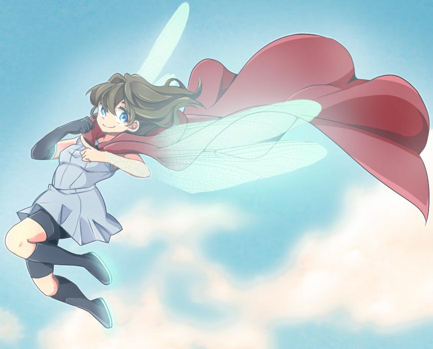 Anisoptera by nakaru-san