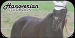 Hanoverian-Studbook Banner by cryionxx