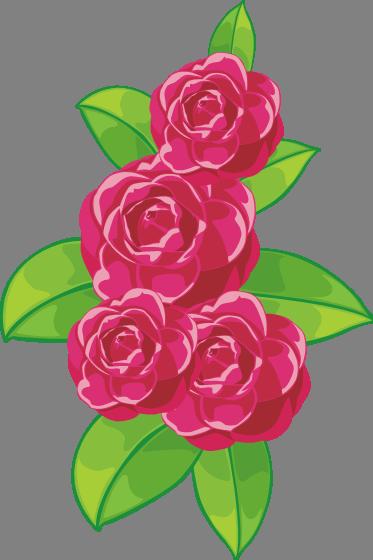 hot pink flower  by maxandpercyever on deviantart, Beautiful flower