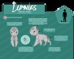 LUMNIES: Anatomy Information