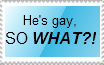 GLBT support stamp by MystEryuNwanTed