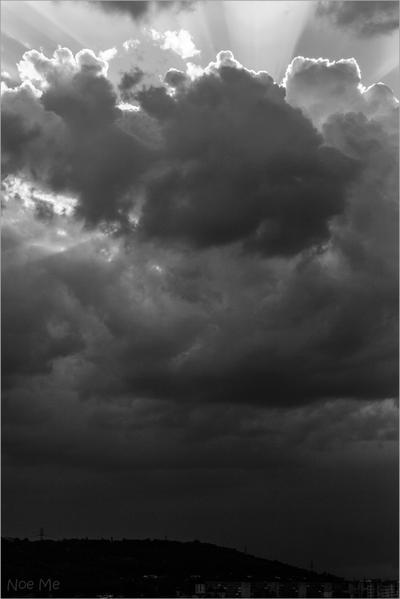 Rays by Noe-Me