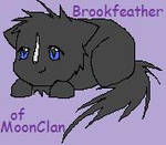 Brookfeather by Nixhil