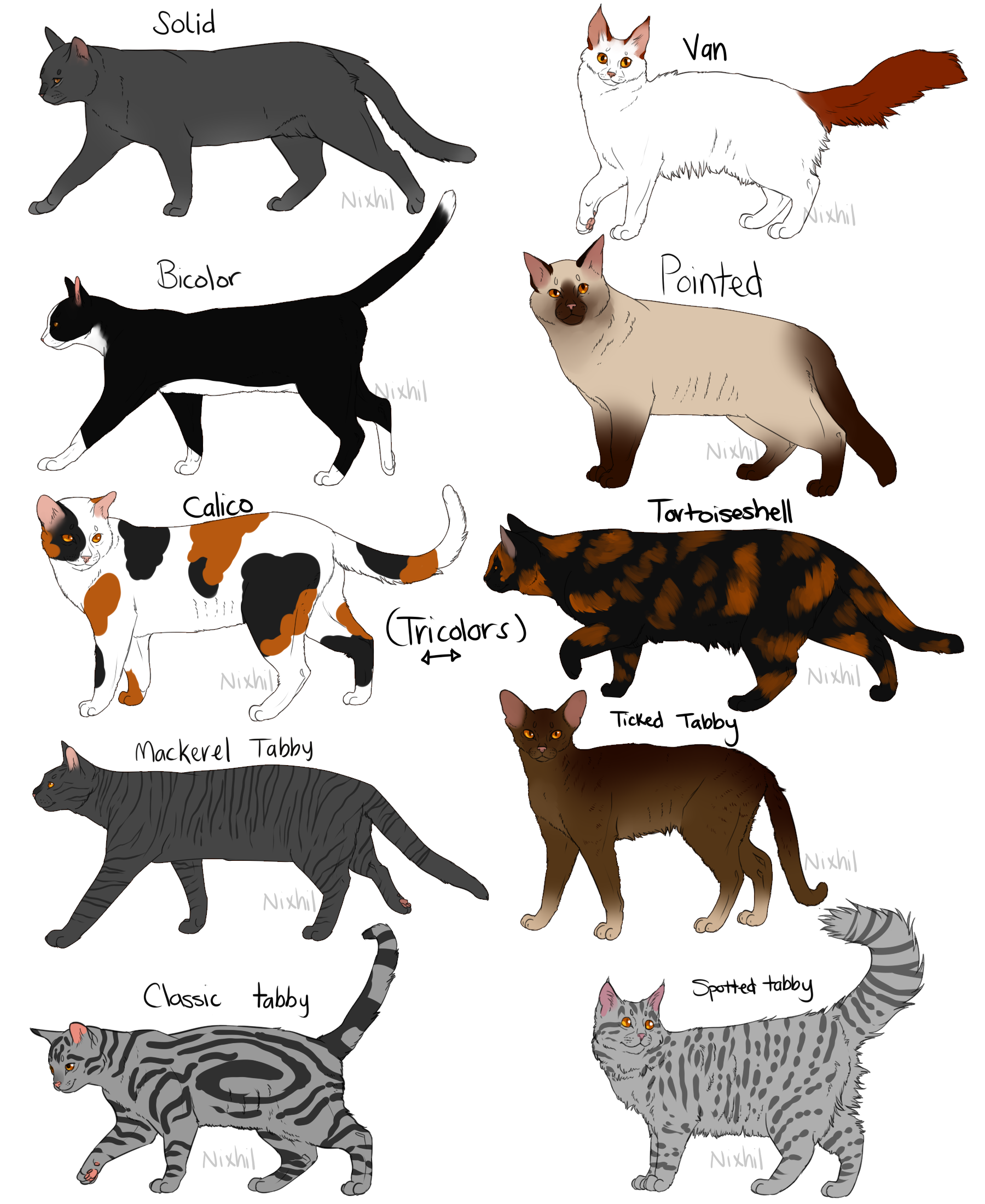 Cat Fur Patterns by Nixhil