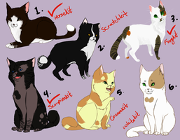 DavePatchy Kits +AUCTION!+ by Nixhil