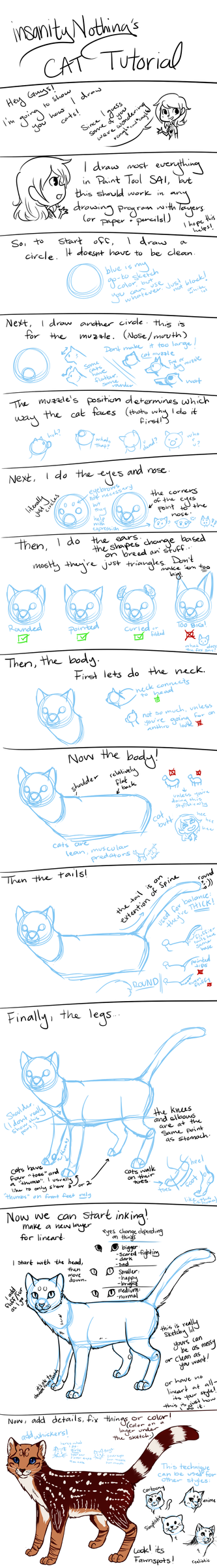 Drawing Tutorial -- Cats by insanityNothing