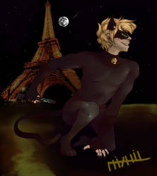 Chat Noir by Nixhil
