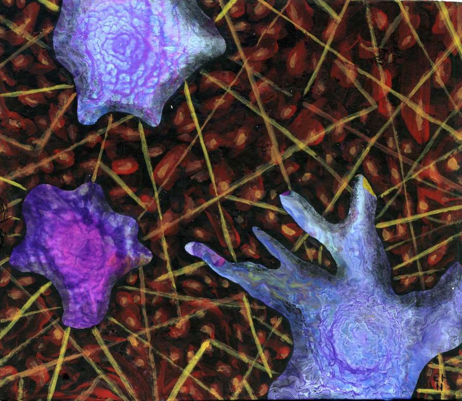the ameba paradigm by anuvys