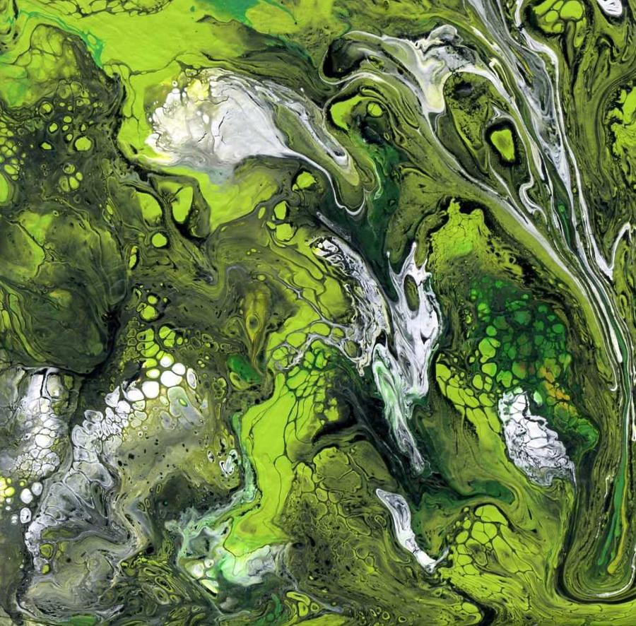 algae storm by anuvys