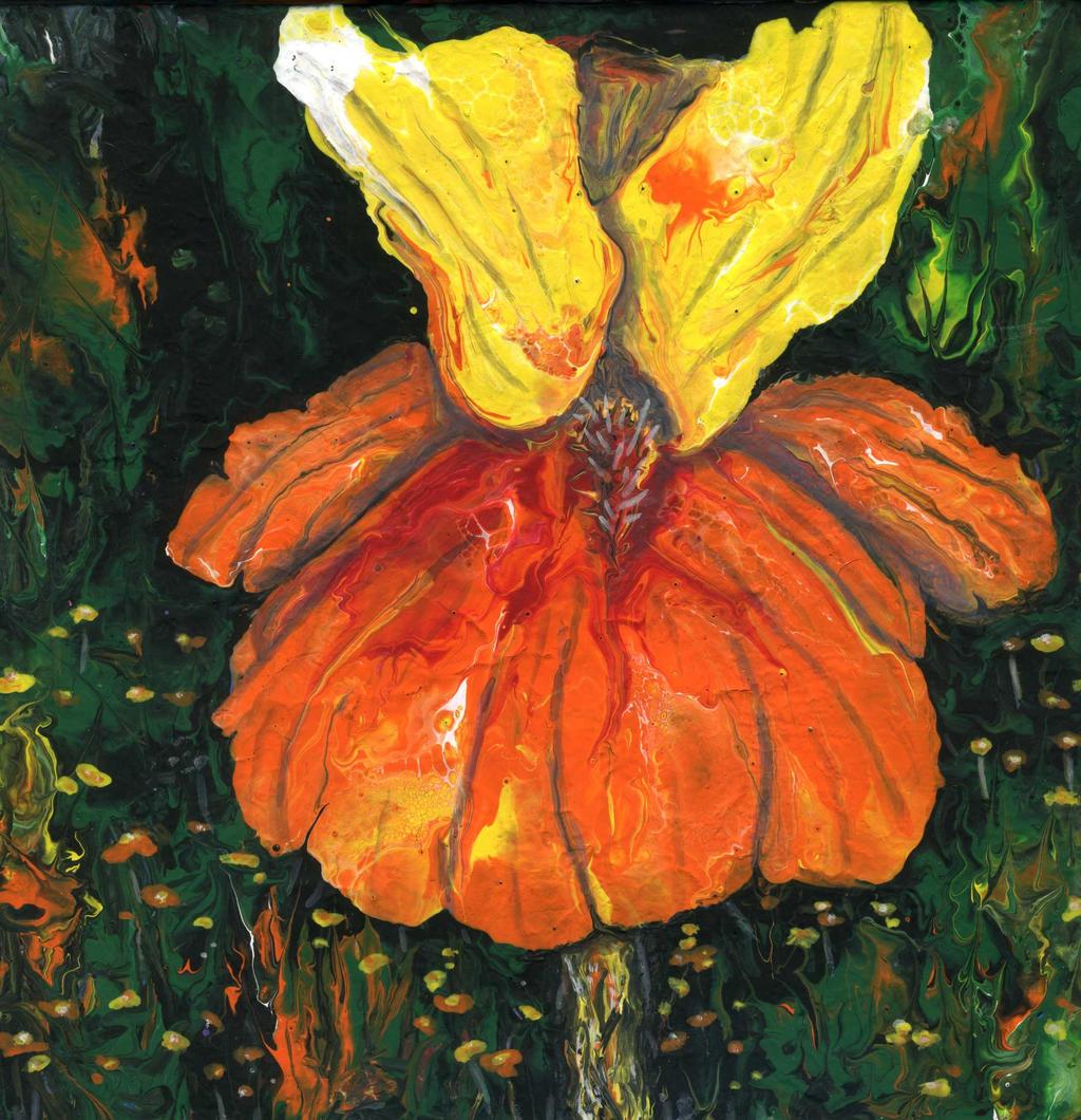 orange flower by anuvys