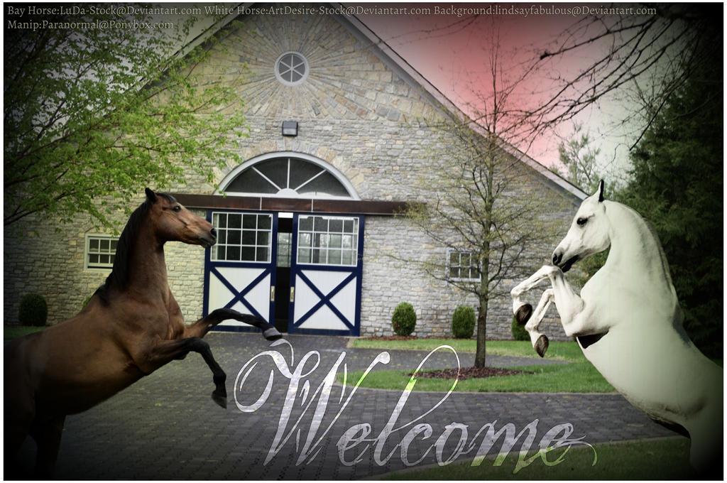 Welcome [ Ponybox ]