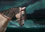 Paranormal Night [Version 2]