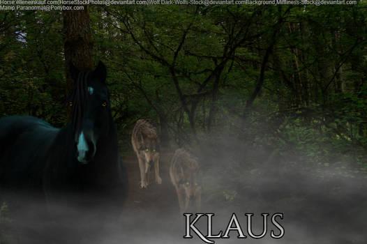 Klaus (TVD Inspired)