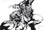 wolvie-sabretooth