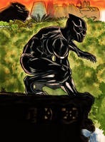 Black Panther Color!