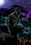 Blank Panther wakanda