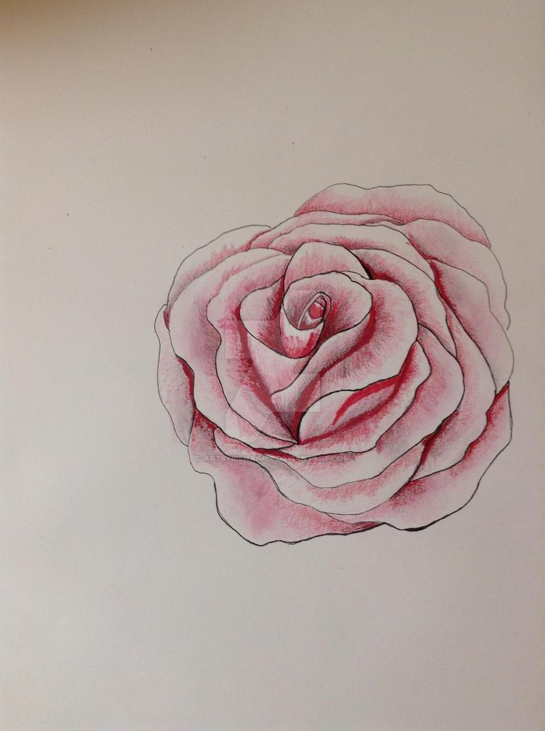 Rosy Dreams by ARTbyBienAimee