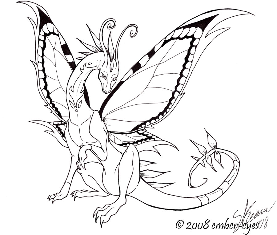 Butterfly Dragon Line Art