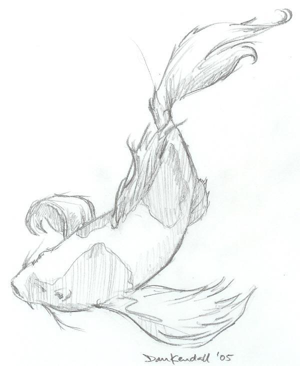 Koi Art Sketch Koi Sketch by Stupendousdan21