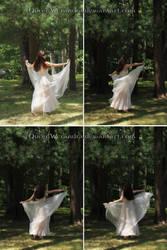 Elegant nightgown stock pack (back) (2015)