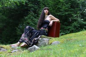 Gypsy's waterfall of hair by QueenWerandra