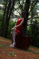 Gypsy in red II by QueenWerandra