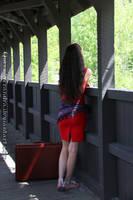 Red on the bridge II by QueenWerandra